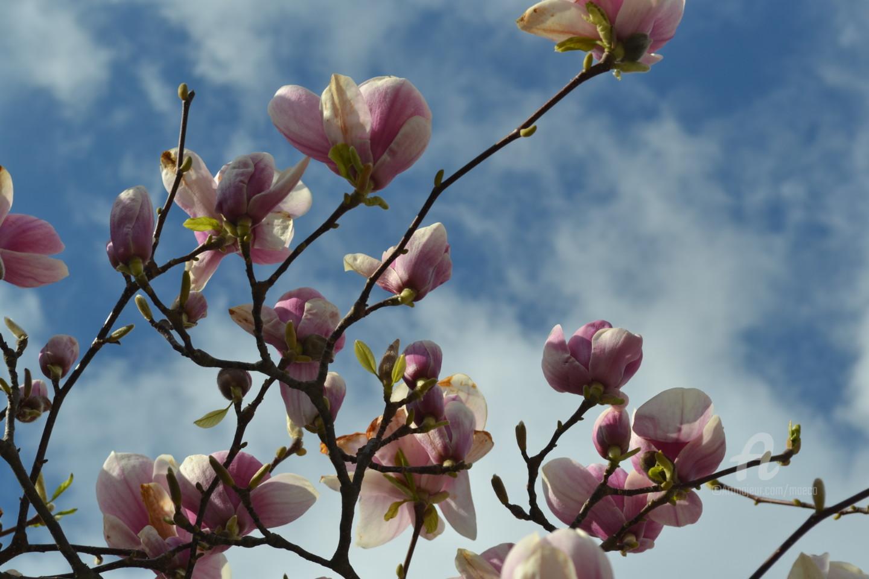 Mariska Ma Veepilaikaliyamma - Beauté du printemps – Beauty of spring