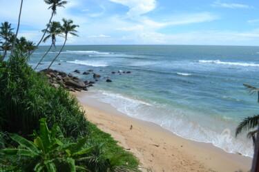Océan et Lumière du soleil – Ocean and Sunlight