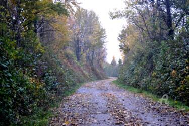 Autumn Way - Chemin de l'automne I
